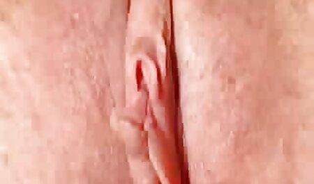 एक खेत पर सुनहरे बालों वाली लड़की पर सेक्सी मूवी पिक्चर हिंदी में चरवाहे गर्मी